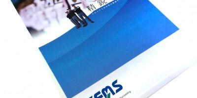 SEMS1